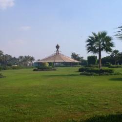 هوى على النيل - جزيرة المعادي-الحدائق والنوادي-القاهرة-1