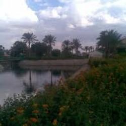 هوى على النيل - جزيرة المعادي-الحدائق والنوادي-القاهرة-3