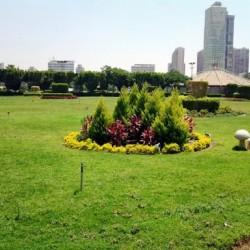 هوى على النيل - جزيرة المعادي-الحدائق والنوادي-القاهرة-2
