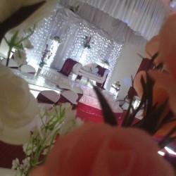 قاعة القصر الملكي-قصور الافراح-الاسكندرية-4