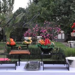 حنوش جاردن-الحدائق والنوادي-بيروت-4