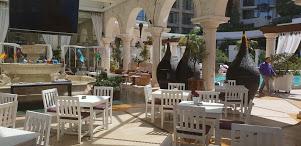 آمتیست لاونج - المطاعم - بيروت
