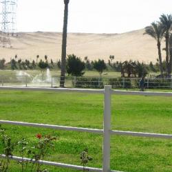 كانتري كلوب سكارا-الحدائق والنوادي-القاهرة-2