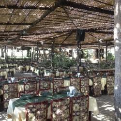 المعصرة-المطاعم-بيروت-1