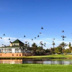 بافيلون دو جولف-الحدائق والنوادي-مراكش-1