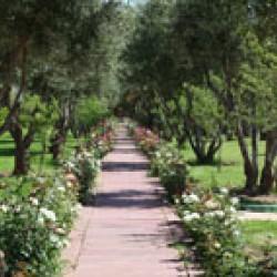 إيدن اندلو سبا & أكوا بارك-الفنادق-مراكش-5