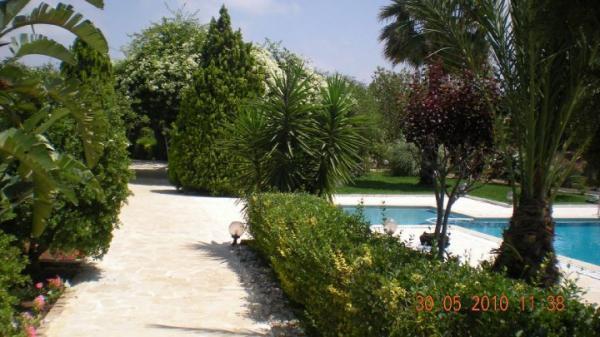 جاردانيا جاردن - الحدائق والنوادي - بيروت