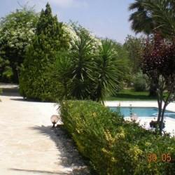 جاردانيا جاردن-الحدائق والنوادي-بيروت-1