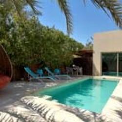فندق ميليا ديزرت بالم دبي-الفنادق-دبي-6