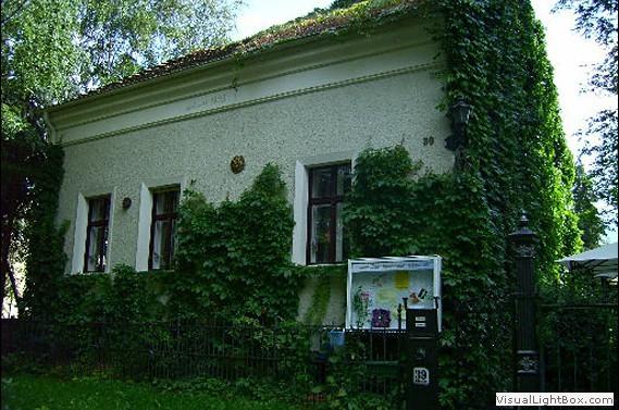 Das Haus der Ideen - Hochzeit im Freien - Berlin