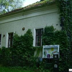 Das Haus der Ideen-Hochzeit im Freien-Berlin-1