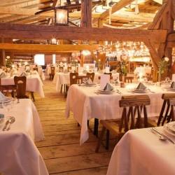 Hasenöhrl Hochseilgarten-Hochzeit im Freien-München-5