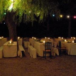 Alpaka Beach-Hochzeit im Freien-München-5