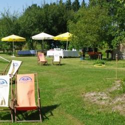 Alpaka Beach-Hochzeit im Freien-München-2