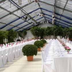Botanikum-Besondere Hochzeitslocation-München-1