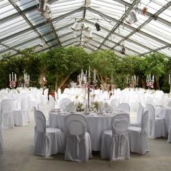 Botanikum-Besondere Hochzeitslocation-München-4
