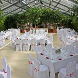 Botanikum-Besondere Hochzeitslocation-München-5