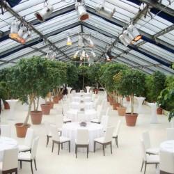 Botanikum-Besondere Hochzeitslocation-München-2