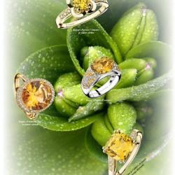 موبوسين-خواتم ومجوهرات الزفاف-الدار البيضاء-3