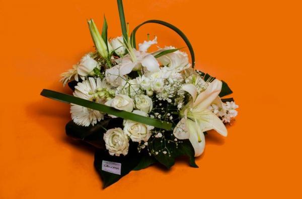 فلورية ل'تيلر فلورل - زهور الزفاف - مراكش