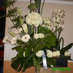 فلورية ل'تيلر فلورل-زهور الزفاف-مراكش-2