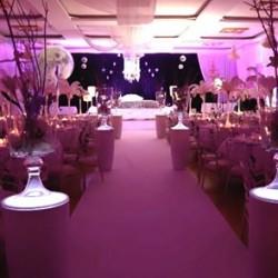 Le Royal-Hochzeitssaal-Hamburg-2