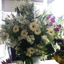 جاردن سوكري-زهور الزفاف-الرباط-3