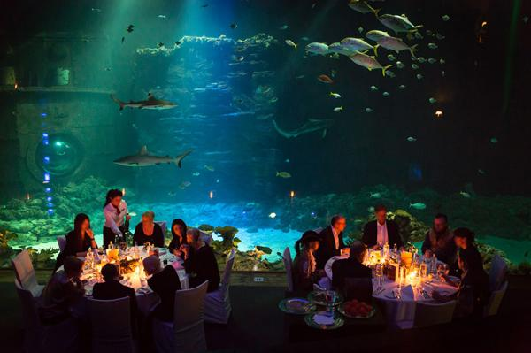 Tropen-Aquarium Hagenbeck - Besondere Hochzeitslocation - Hamburg