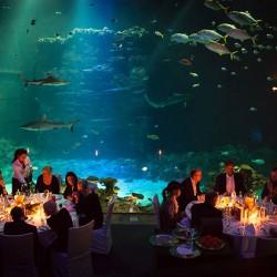 Tropen-Aquarium Hagenbeck-Besondere Hochzeitslocation-Hamburg-1