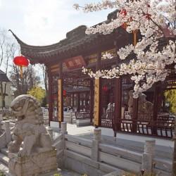 Chinesisches Teehaus Yu Garden-Besondere Hochzeitslocation-Hamburg-5