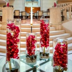 فندق راديسون بلو مارتينيز-الفنادق-بيروت-3