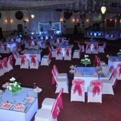 قاعة فينوس للحفلات والمؤتمرات-قصور الافراح-الاسكندرية-3