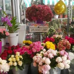 ايكزوتيكا-زهور الزفاف-دبي-4