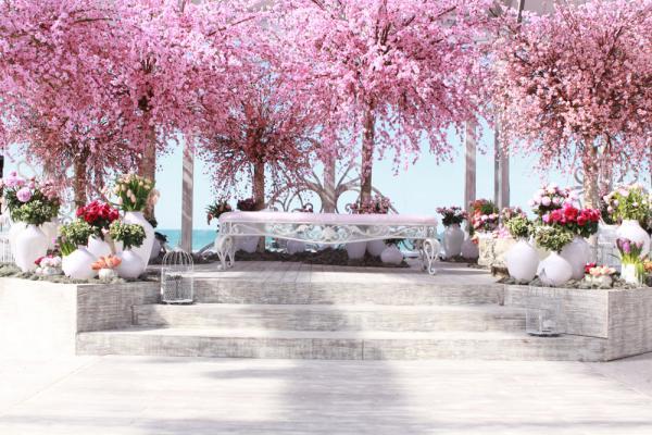 بليس فلاورز - زهور الزفاف - أبوظبي