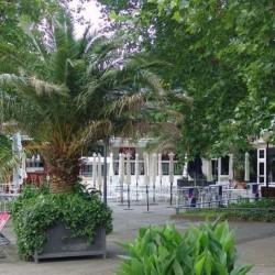 Café Seeterrassen-Restaurant Hochzeit-Hamburg-6