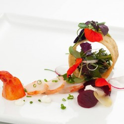 Prime Catering-Hochzeitscatering-Berlin-6