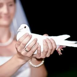 mein-Hochzeitsfotograf-Hochzeitsfotograf-Berlin-4