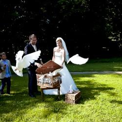 mein-Hochzeitsfotograf-Hochzeitsfotograf-Berlin-5