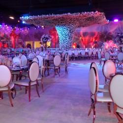 Electra Qatar W.L.L-كوش وتنسيق حفلات-الدوحة-1
