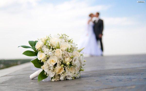 Hochzeitstraum - Hochzeitsplaner - Köln