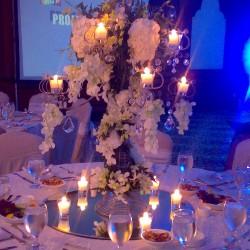 مركز حدائق السدرة-زهور الزفاف-الدوحة-1