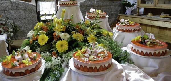 Hochzeitsplaner Oldenburg - Hochzeitsplaner - Bremen