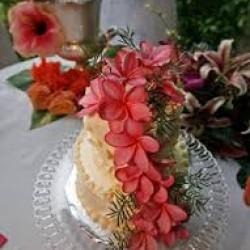 CAFÉ RIESE-Hochzeitstorten-Köln-5