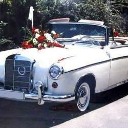 auto-fritze-Hochzeitsautos-München-4