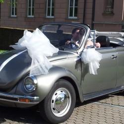 Oldtimer am Rhein-Hochzeitsautos-Köln-3