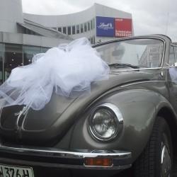 Oldtimer am Rhein-Hochzeitsautos-Köln-5