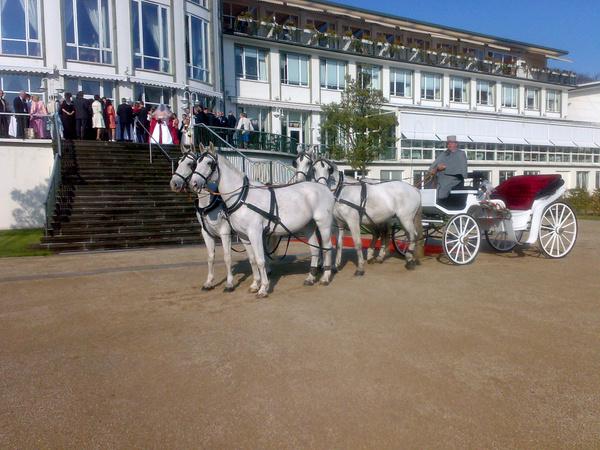 Lindhoff Kutschenfahrten - Hochzeitsautos - Bremen