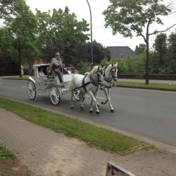 Lindhoff Kutschenfahrten-Hochzeitsautos-Bremen-4