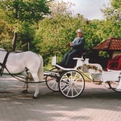Lindhoff Kutschenfahrten-Hochzeitsautos-Bremen-6