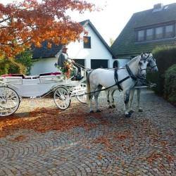 Lindhoff Kutschenfahrten-Hochzeitsautos-Bremen-3